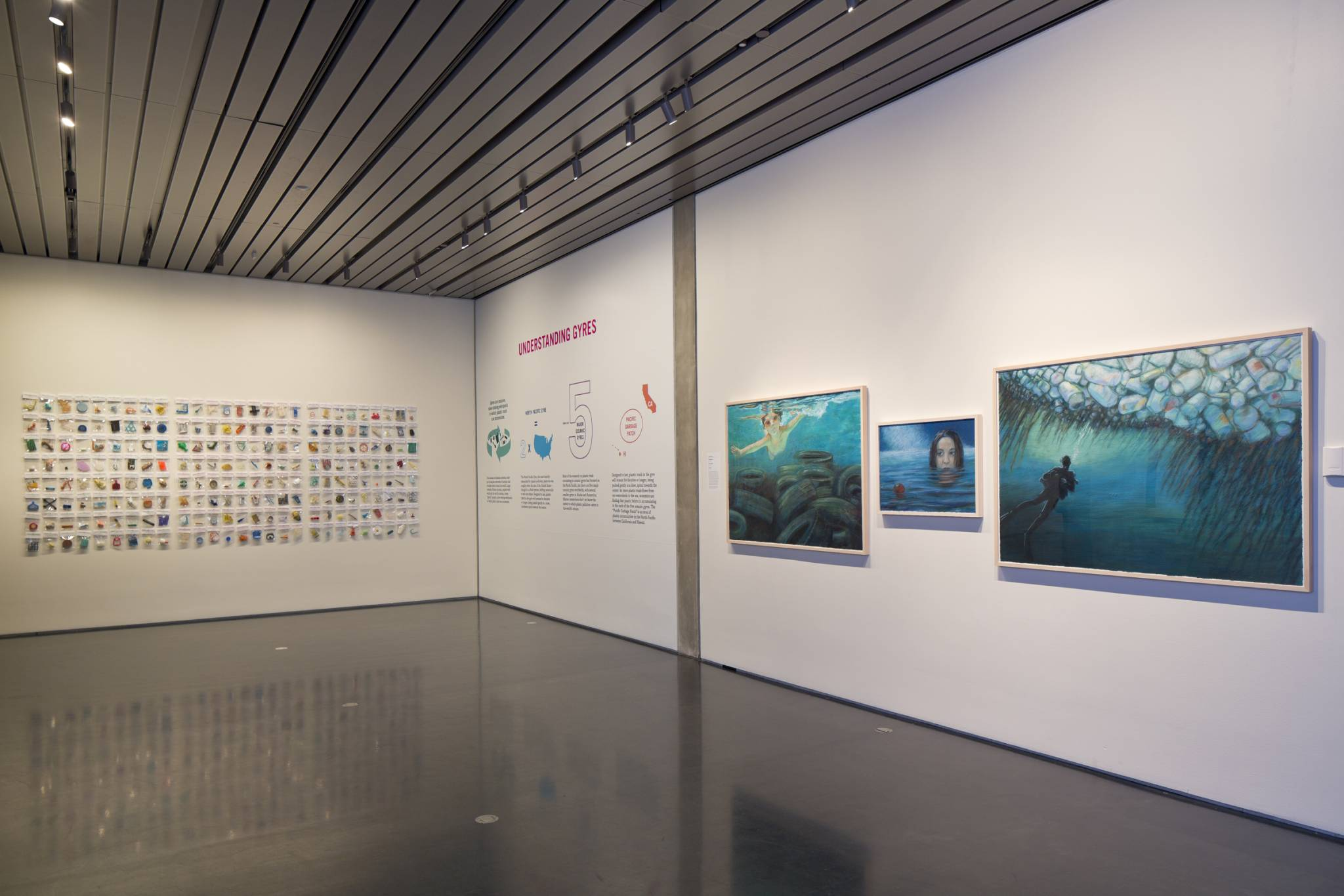 'GYRE, The Plastic Ocean' completes its journey in San Jose, California